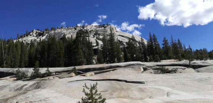 Consigli utili per visitare lo Yosemite National Park