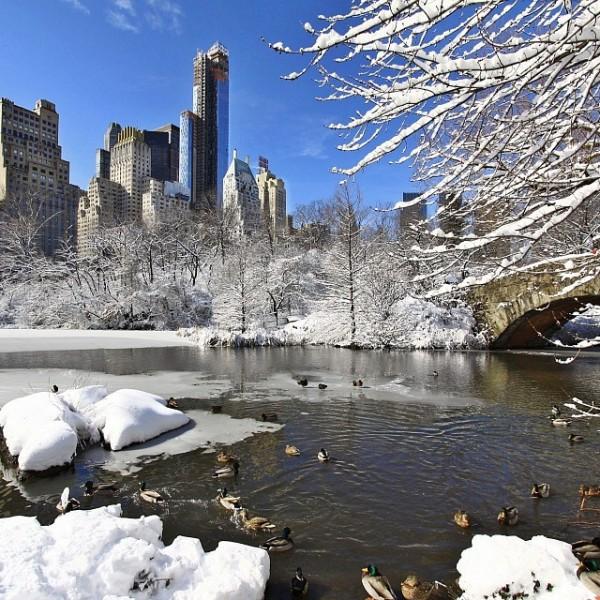 natale-newyork-centralpark