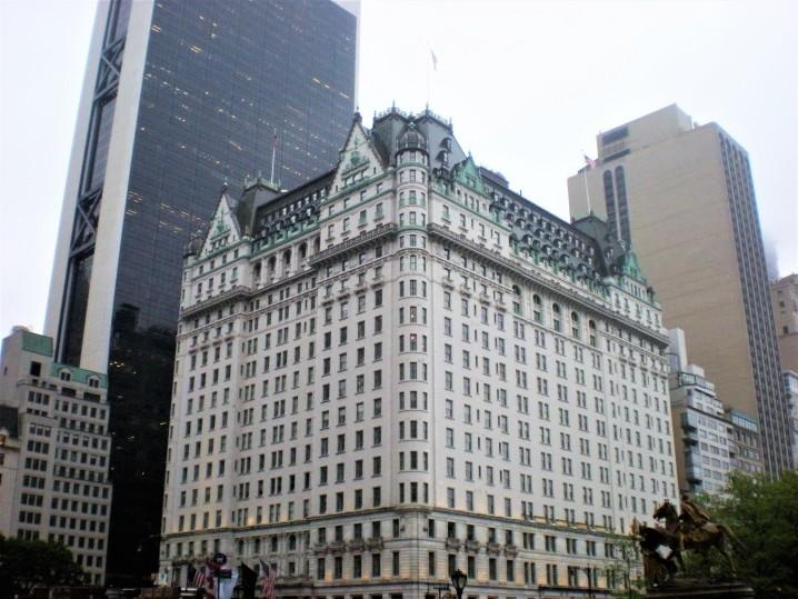 plaza-cosa-fare-newyork-quando-piove
