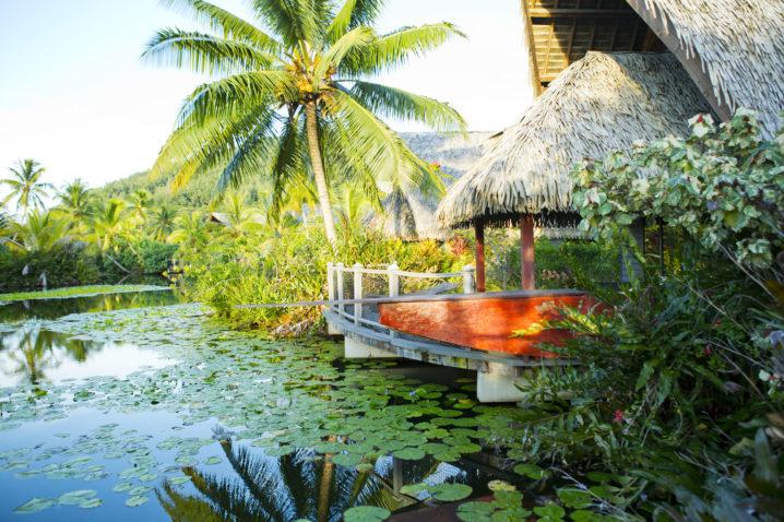 polinesia-low-cost-risparmiare-quali-isole