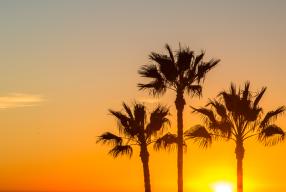 California: 5 motivi + 1 per volare a San Diego