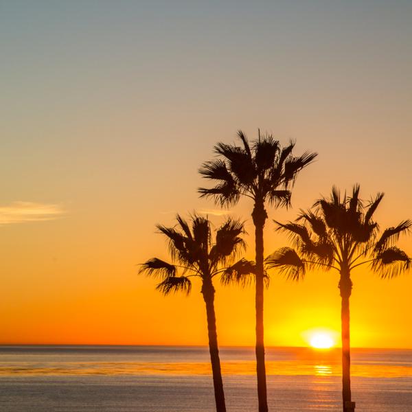 sandiego-california-cosa-vedere