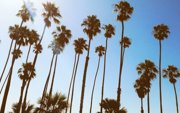 California_SantaBarbara