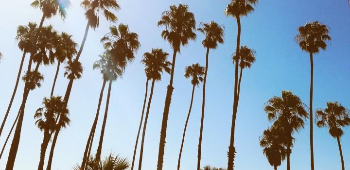 Back from California, chiedimi se sono felice