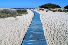 Vacanze in Sardegna, dove andare in estate?