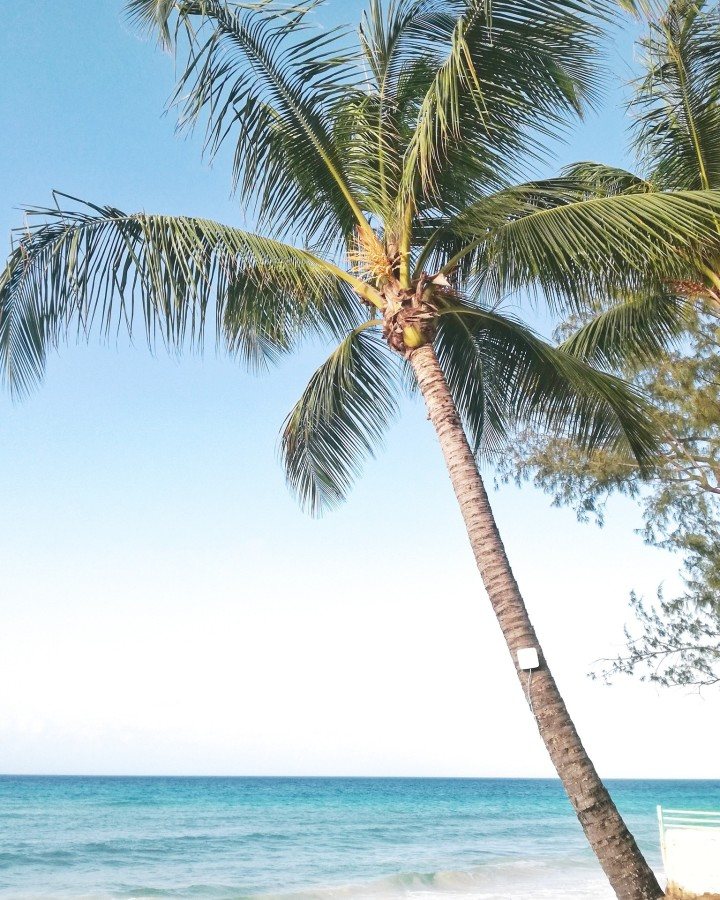 acanza-barbados-spiagge