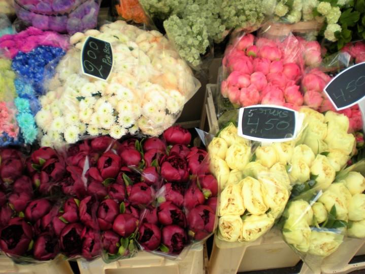 Amsterdam-mercato-fiori