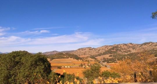 visitare-napa-valley-california