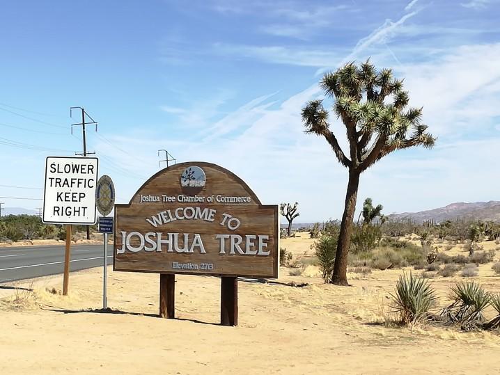 California_JoshuaTreePark