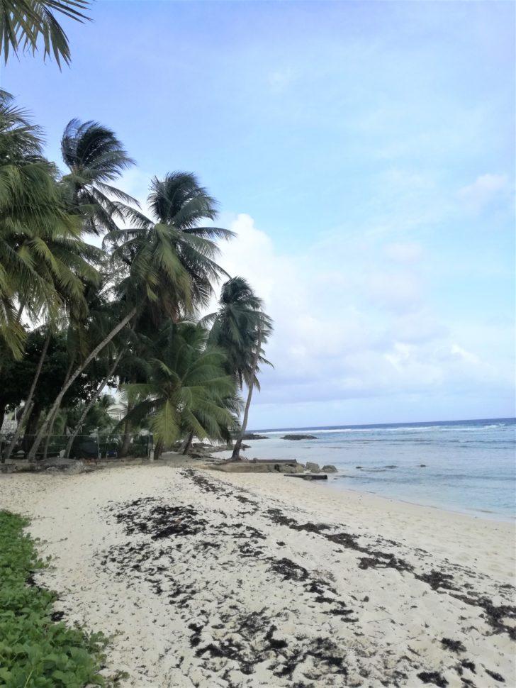 barbados-spiagge-più-belle