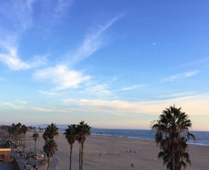 california-on-the-road venice-beach
