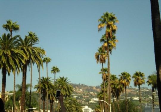 california_losangelesboulevard_iviaggidimonique