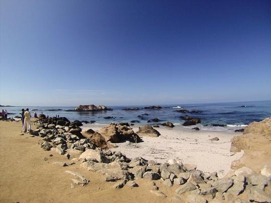 17-mile-drive-california