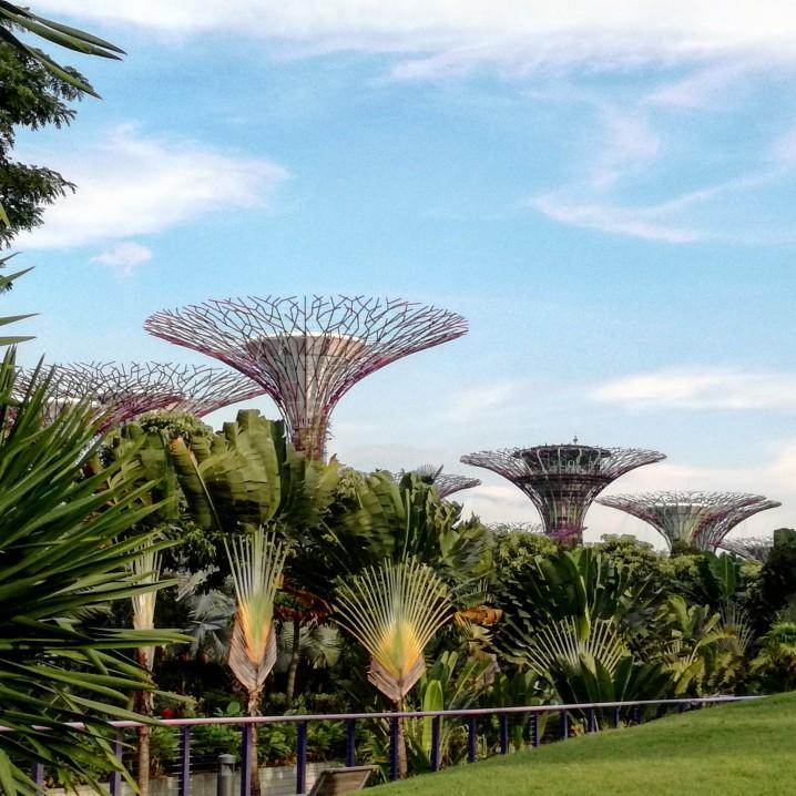Due giorni Singapore
