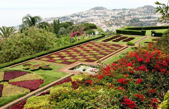giardinobotanicofunchal_madeira_iviaggidimonique