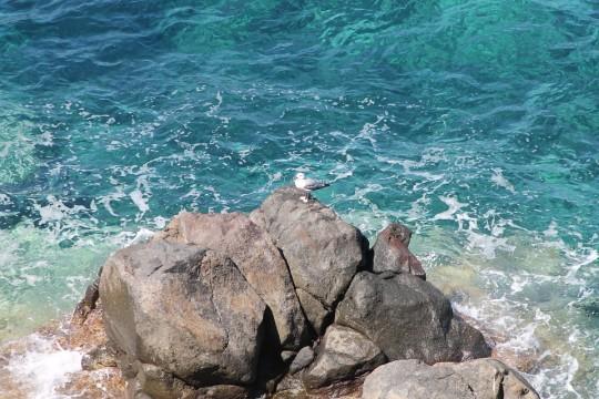 isola-delba-vacanza-famiglia