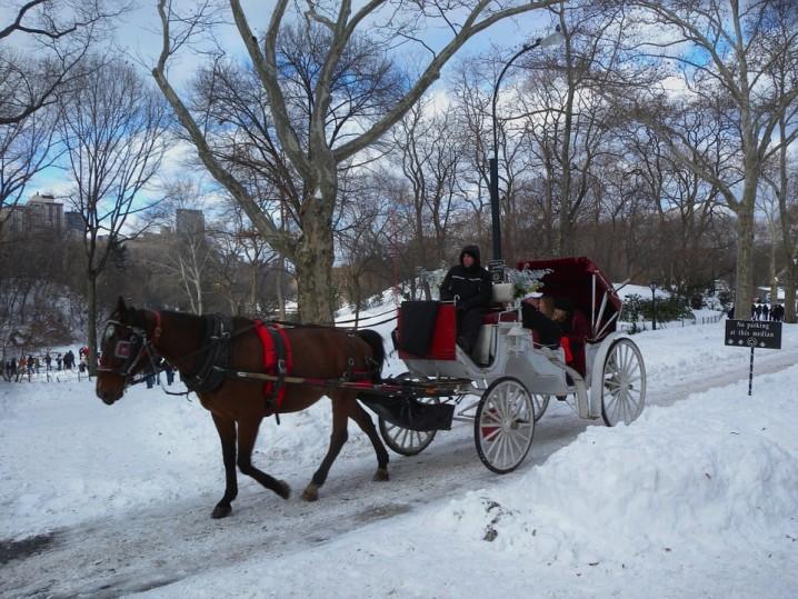 natale-newyork-sposi