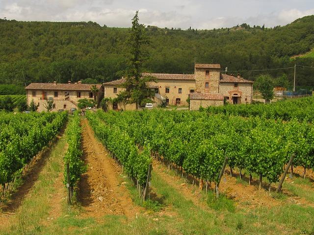 toscana-chianti-cantine-autunno-vino