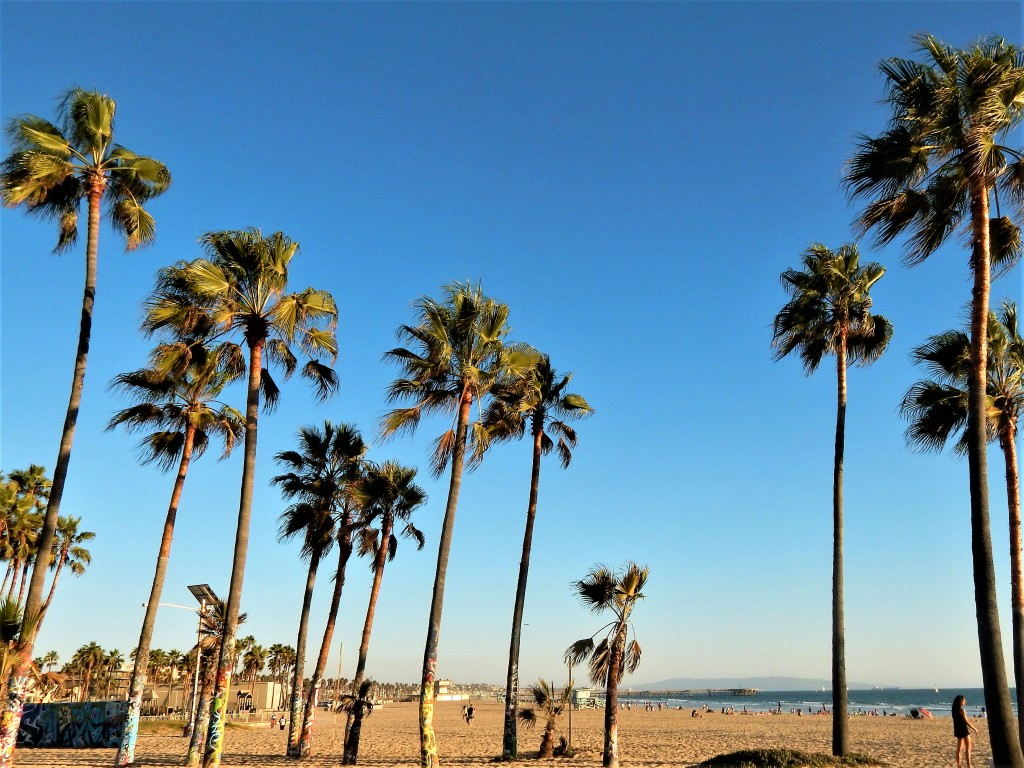 dove-dormire-los-angeles-venice-beach